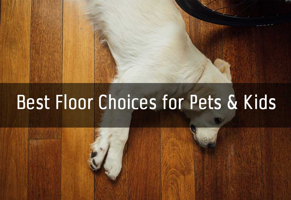 Best Floor Choices For Pets And Kids | Dogs, Cats, Life With A Family