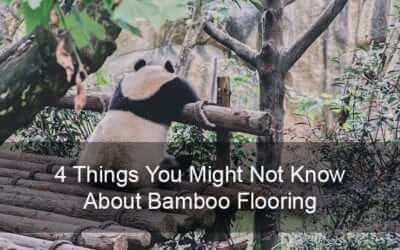 4 Things You Might Not Know About Bamboo Flooring