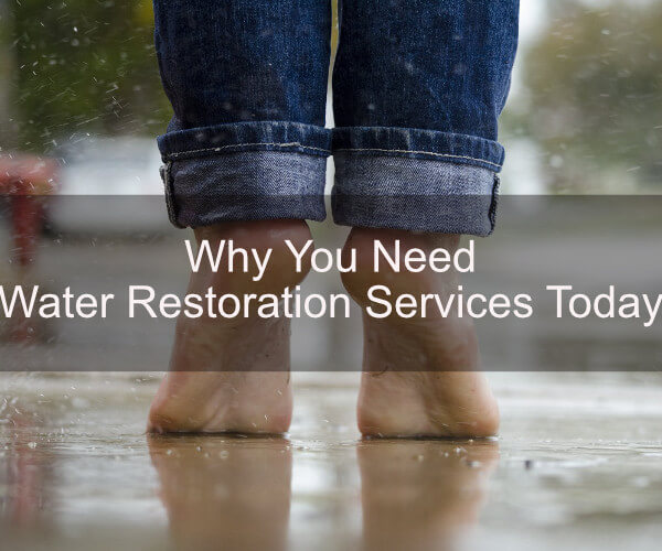 Why You Need Water Restoration Services Today
