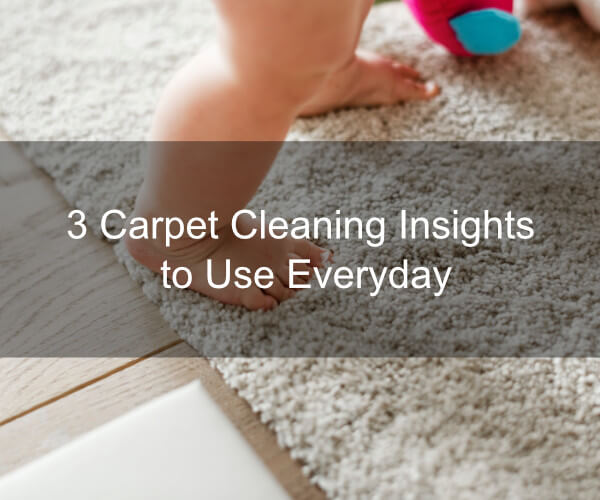 3 Carpet Cleaning Insights to Use Everyday